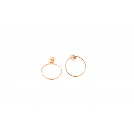 <p>Gold filled earring (18k gold rolled)</p> <p>Diameter 15mm</p>